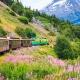 Alaska Vacations with Land Travel - Sunset-Travel.com