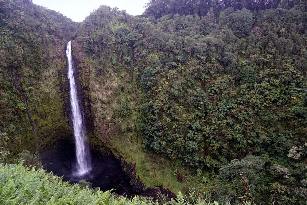 Akaka Falls Hawaii Family Vacation - Sunset-Travel.com